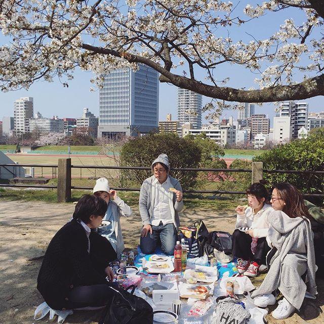 昨日は舞鶴公園でみんなでお花見でした