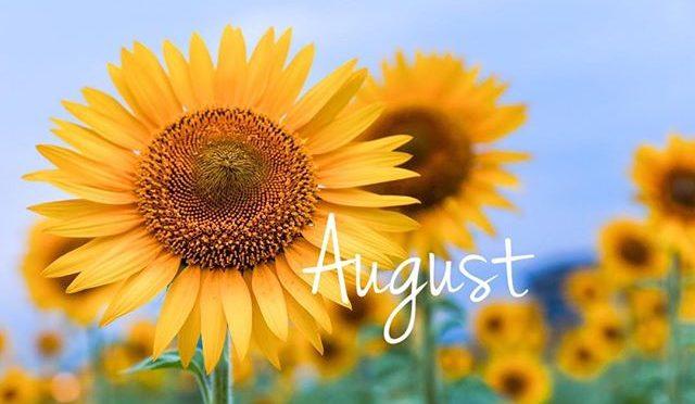 8月のスタッフの公休日をお知らせ