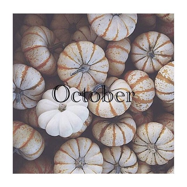 *最近は少し肌寒くなり、すっかり秋めいてきましたね︎**10月のスタッフの公休日をお知らせ致します︎***福田・7(土)17時まで、8(日)大久保・10(火)曽田・5(木)、24(火)城・11(水)、31(火)***なお、毎週月曜日、第3火曜日(17日)は定休日となっております!よろしくお願い致します︎***#r#rhair#福岡美容室#薬院美容室美容室#美容院#ヘアサロン#薬院#福岡#エッセンシティ#オーガニックカラー#ジョンマスター#ジョンマスターオーガニック#johnmastersorganics#ユフォラ#ユフォラ取り扱い店舗#オーガニック#オーガニックサロン#ボジコ#かぼちゃ#ハロウィン#pumpkin #10月#october #natural#organic#vsco#vscocam